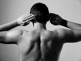 Como construir parte superior das costas Músculos