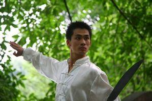 Como aprender Kung Fu online