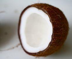 Cozinhar com óleo de coco