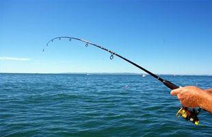 Como usar um Fishfinder para pescar robalo