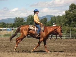Qual Pé Cavalo Arena é o melhor para cavalos?