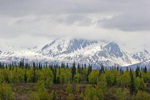 A Rain Fall Média e Temperatura em Alaska