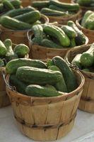 Quais são bons alimentos para comer com Pickles?