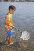 Como fazer um Banhar Net