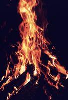 Como iniciar um incêndio com Pine Needles