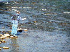 Spinning Rod Vs.  Fly pesca de truta