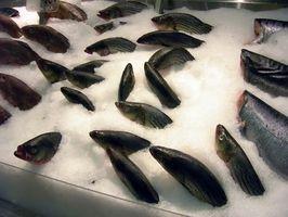 Advertências sobre Farm Levantada Peixe