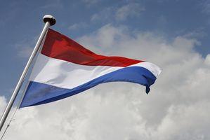 Regulamento Aduaneiro Holandês