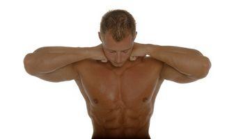 Off Season Dieta para Musculação