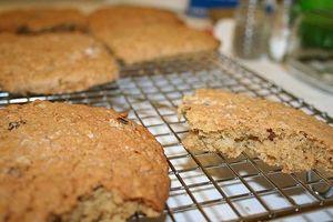Como fazer dieta rica em proteínas cookies