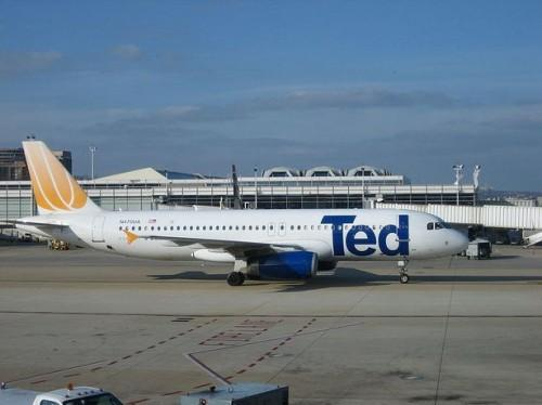 O que é Ted Airlines?