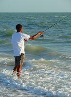 Como faço para pescar com areia Pulgas na Flórida água salgada?