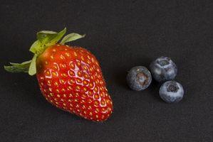 Como posso fazer Fruit couro em um desidratador American Harvest?