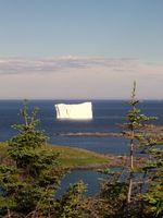 Pesca Newfoundland Salt Water