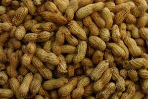 Como se preparar Parched Peanuts