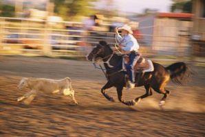 Passado Rodeio Eventos em Tunica, Mississippi