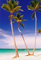 Problemas de Turismo do Caribe