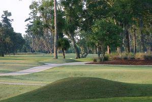 Top 5 no ranking dos clubes de golfe para as Mulheres