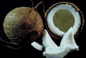 Como usar o óleo de coco em vez de encurtamento