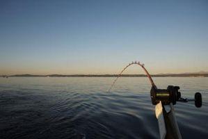 Como escolher um bom Fish Finder