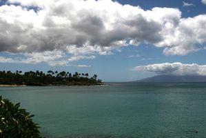 Condomínio Férias no Havaí