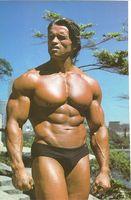 Horários de treino para a construção muscular