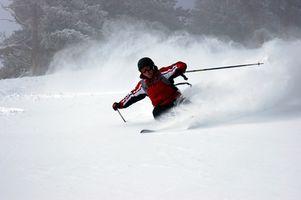 Informações sobre Twin Tip Skis