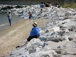 Maryland National Seashore Park Camping Area