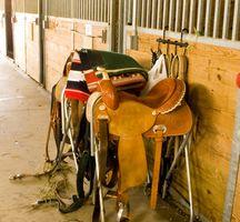 Como Size & Selas ocidentais caber em Cavalos