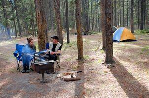 Campgrounds perto de Ely, Nevada