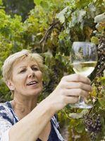 Quais são os quatro tipos de uvas usadas em vinhos?