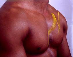 Como ganhar o músculo sem Protein